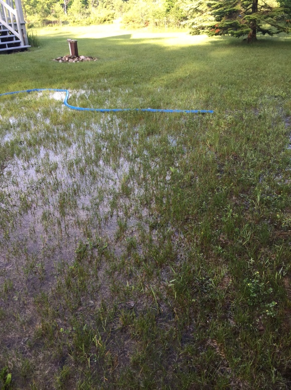 Flooded Yard at K9ZW Island Home